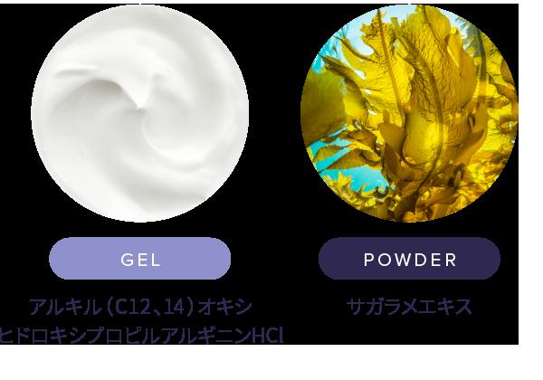 サガラメエキス・アルキル(C12、14)オキシヒドロキシプロピルアルギニンHCl